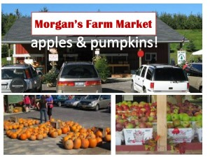 Morgans farm market