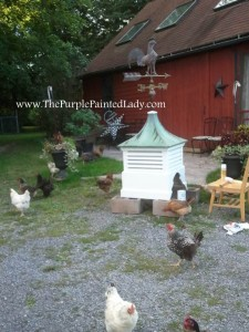 Painted cupola with chicken