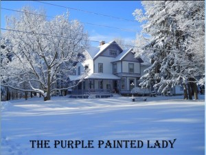 The Purple Painted Lady home winter house 845