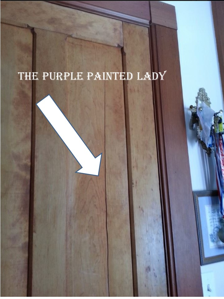 The Purple Painted Lady Ed Door Humidity 2