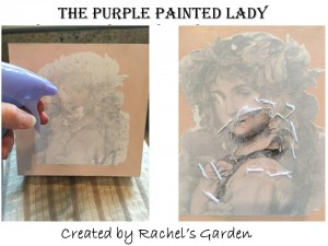 Amy Rachel's Garden The Purple Painted Lady Removal